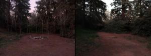 Twin Peaks Locations - Glastonberry Grove